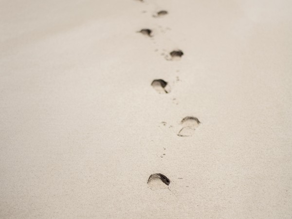 The Way, We Walk Along