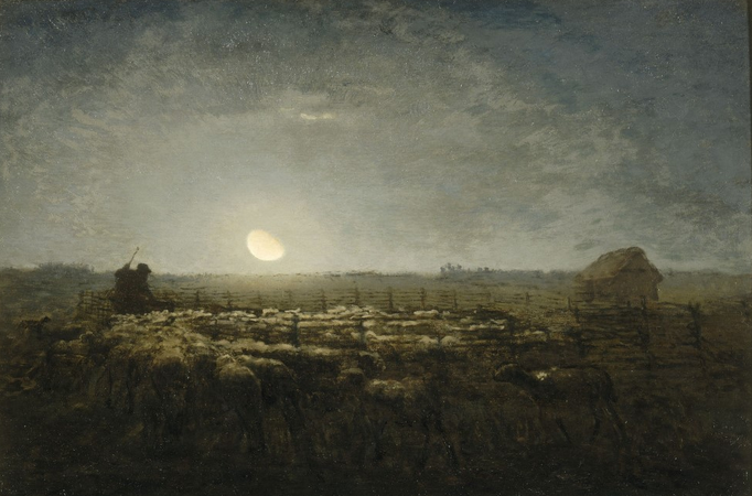 Hope for Sheep